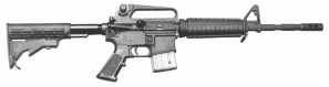 Washington Beltway Snipers Used Semiautomatic Bushmaster AR-15 Rifle Like This One