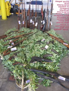 Weed and Weapons In Oregon