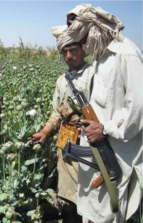 Drug Money Fuels Taliban